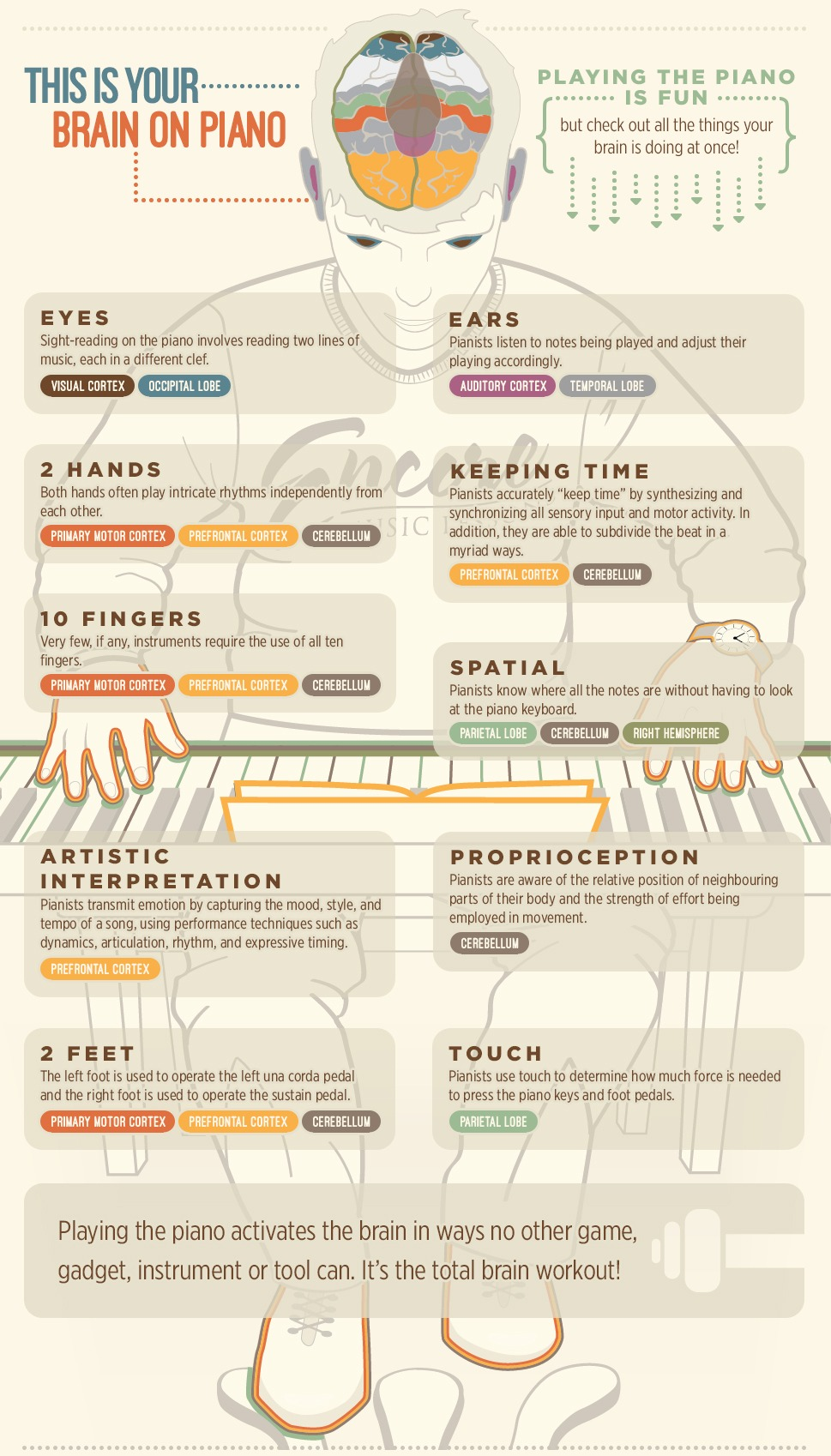 Infographic explaining how piano lessons are good for your brain and cognition